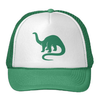 Dinosaur Hat - Green