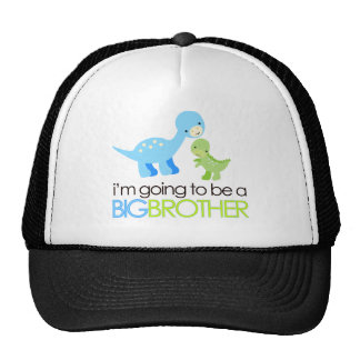 Dinosaur I'm Going to Be A Big Brother Cap