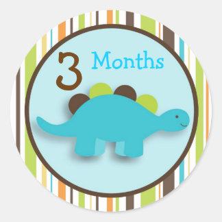 Dinosaur Lil DIno Boy Monthly Milestone Stickers