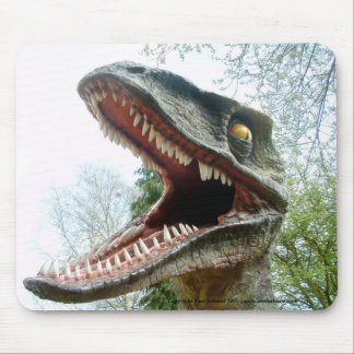 Dinosaur Mousemat