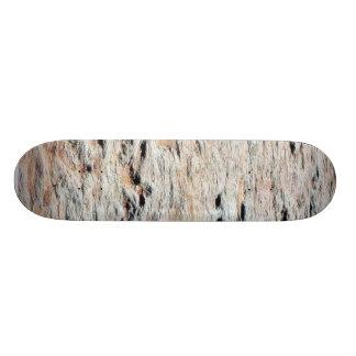 Dinosaur Tracks Skateboard Decks