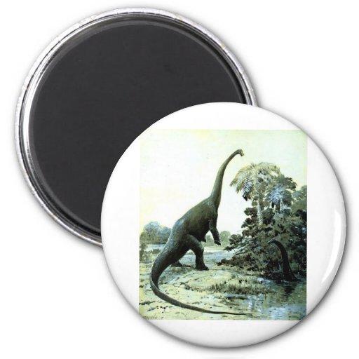 diplodocus-1 magnet