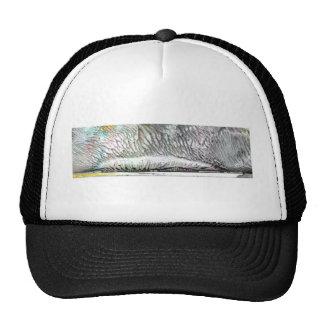 diplodocus hat