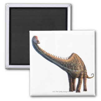 Diplodocus Refrigerator Magnets