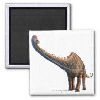 Diplodocus Square Magnet