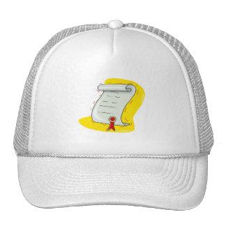 Diploma Hats