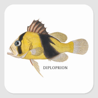DIPLOPRION SQUARE STICKER