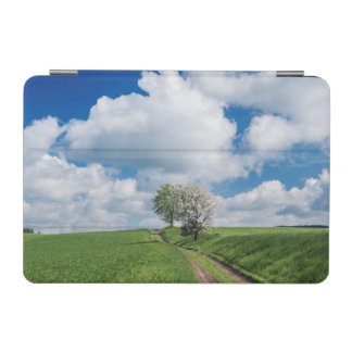Dirt Road and Apple Trees iPad Mini Cover