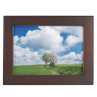Dirt Road and Apple Trees Keepsake Box