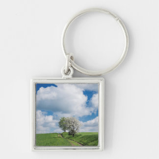 Dirt Road and Apple Trees Key Ring