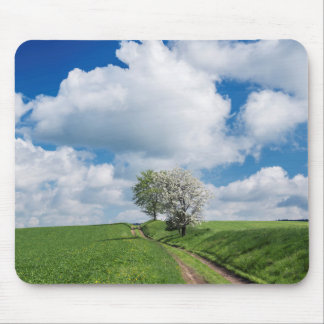 Dirt Road and Apple Trees Mouse Mat