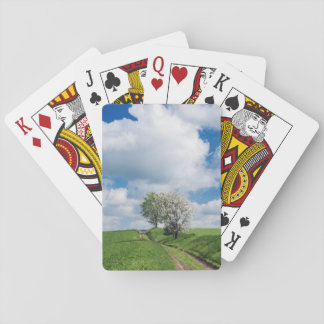 Dirt Road and Apple Trees Playing Cards