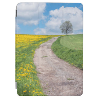 Dirt Road and Tree iPad Air Cover