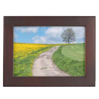 Dirt Road and Tree Keepsake Box