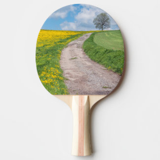 Dirt Road and Tree Ping Pong Paddle