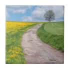 Dirt Road and Tree Tile