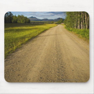 Dirt Road in Eagle, Alaska Mouse Mat