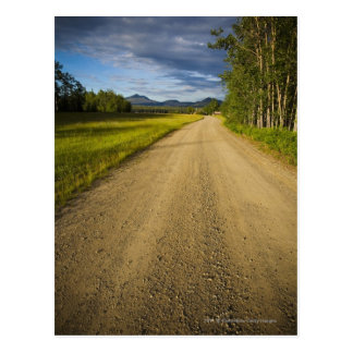 Dirt Road in Eagle, Alaska Postcard