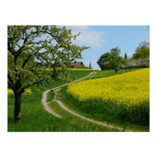 Dirt road on rape field spring, Maulbronn Poster