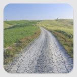 Dirt Road through Fields and Hills, Val d'Orcia,