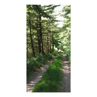 Dirt Track Through Trees. Custom Photo Card