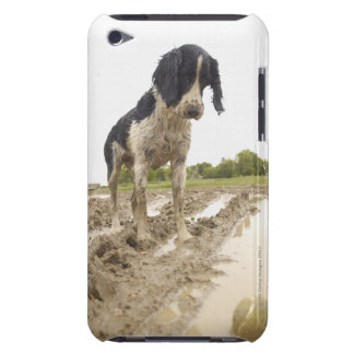 Dirty dog looking at tennis ball in mud barely there iPod covers