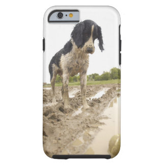 Dirty dog looking at tennis ball in mud tough iPhone 6 case