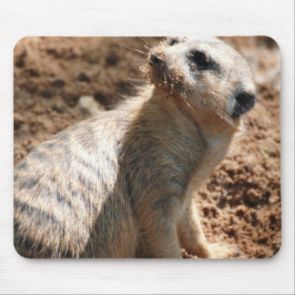 Dirty Meerkat Mouse Pad
