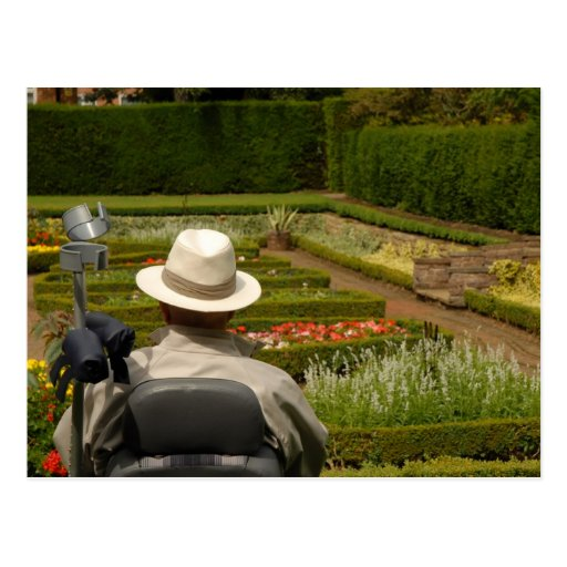 Disabled man in wheelchair in garden postcards