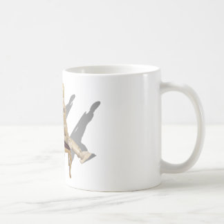 Disagreement122410 Basic White Mug