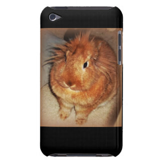 Disapproving Bunny Rabbit iPod Case