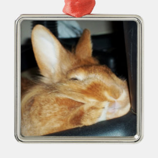 Disapproving Bunny Rabbit Smiling Ornament
