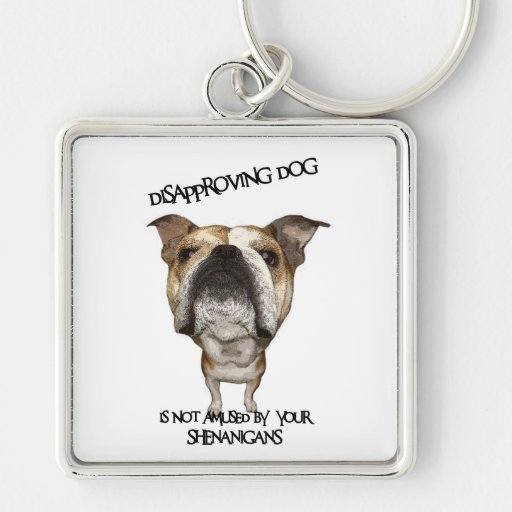 Disapproving Dog Bulldog Not Amused by Shenanigans Key Chain