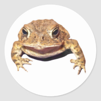 Disapproving Toad Round Sticker