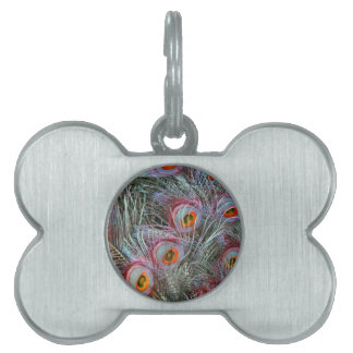 Disco 70s Peacock Eyes Pet ID Tag