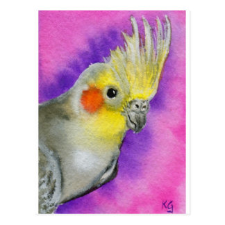 Disco Cockatiel Postcard