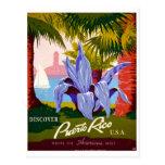 Discover Puerto Rico Vintage Postcard