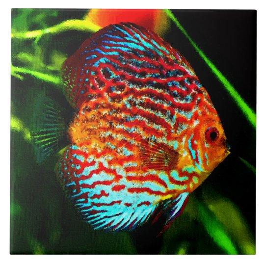 Discus aquarium fish decorative tile