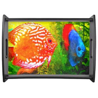 Discus aquarium fish  luxury serving tray