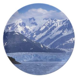 Disenchantment Bay and Hubbard Glacier, Plates