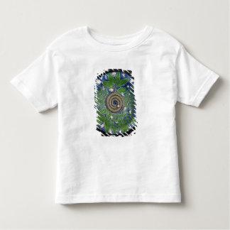 Dish, Palissy Ware Toddler T-Shirt