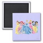 Disney Princesses 13 Fridge Magnet