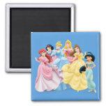 Disney Princesses 7 Refrigerator Magnets