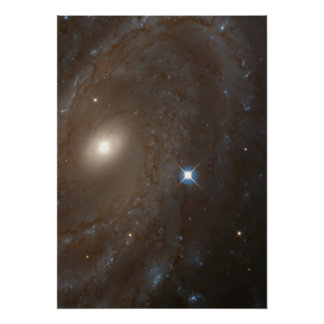 Distant Spiral Galaxy NGC 4603 Home to Variable Print