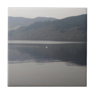 Distant view of a goose swimming peacefully tiles