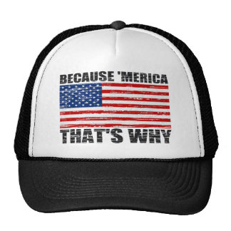 Distressed BECAUSE 'MERICA THAT'S WHY US FLAG Hat