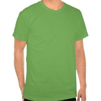 Distrissed Irish Flag Skull Tee Shirt