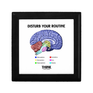 Disturb Your Routine Think (Brain Anatomy) Small Square Gift Box