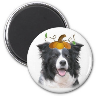 Ditzy Dogs~Border Collie Magnet~Halloween Magnet