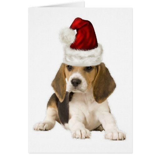 Ditzy Dogs~Original Notecard~Beagle~Christmas Greeting Cards